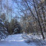 Podkarpacie w zimowej szacie